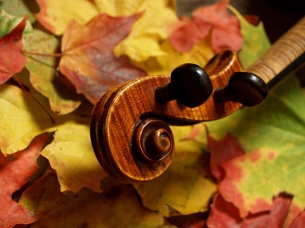 autumn-violin